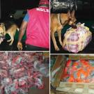 NDLEA-sniffer-dogs-detect-N351m-heroin-in-footballs-rugs
