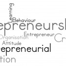 entrepreneurial innovation