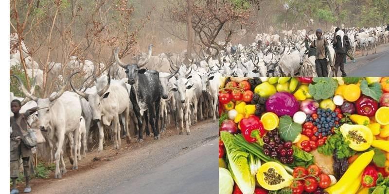 Fulani herdsmen and food security